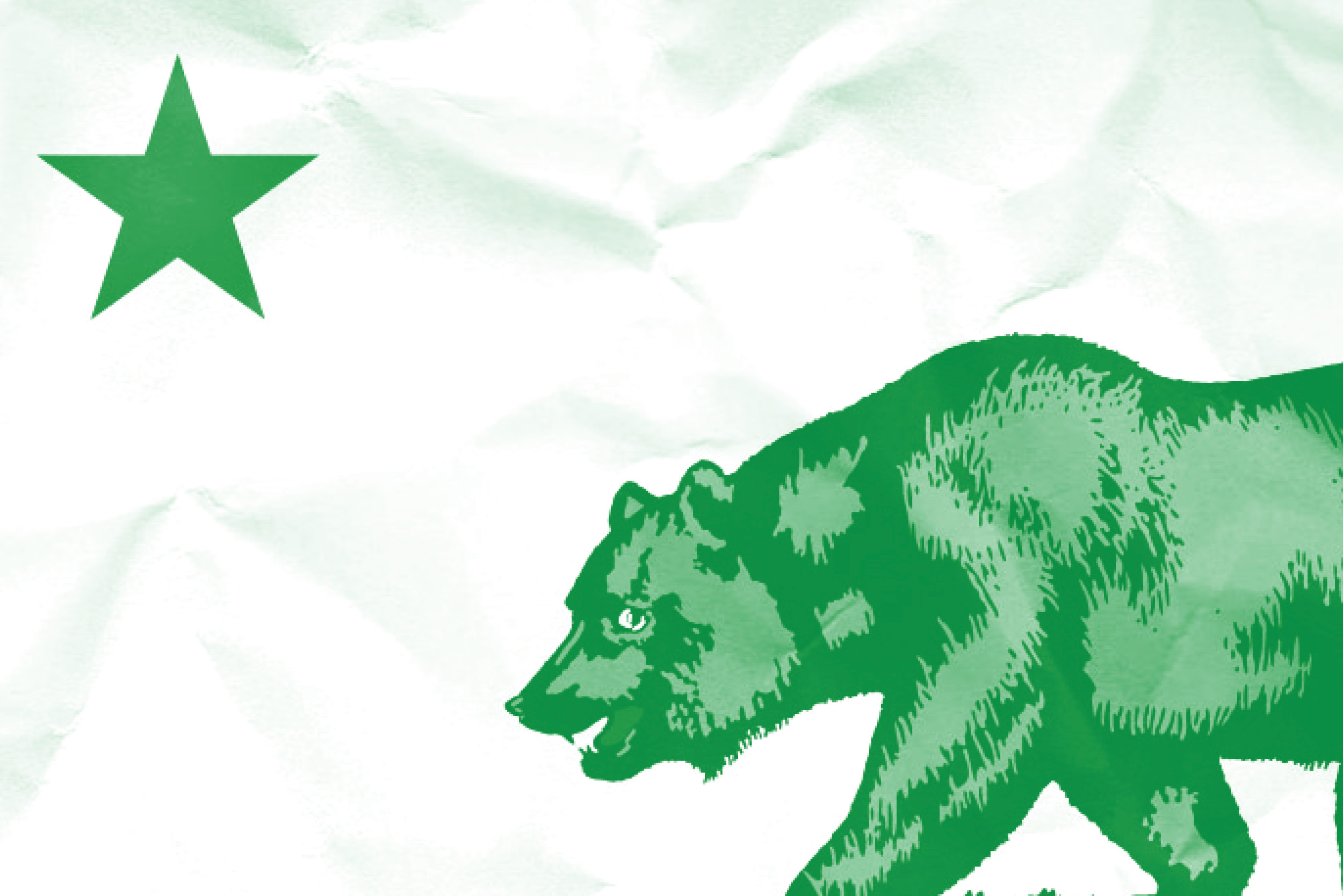 California flag graphic